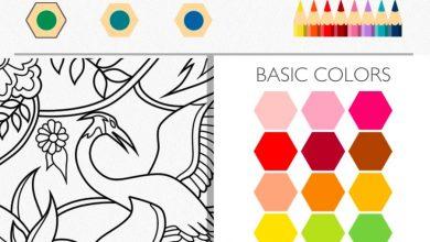 Photo of Colorfy – poczuj, co to relaks!